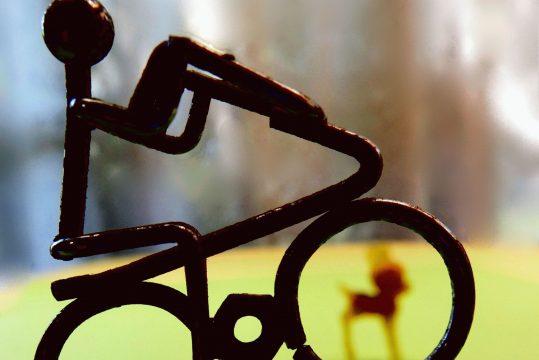 自転車保険 加入義務化!どんな保障でどう選んだらいい?
